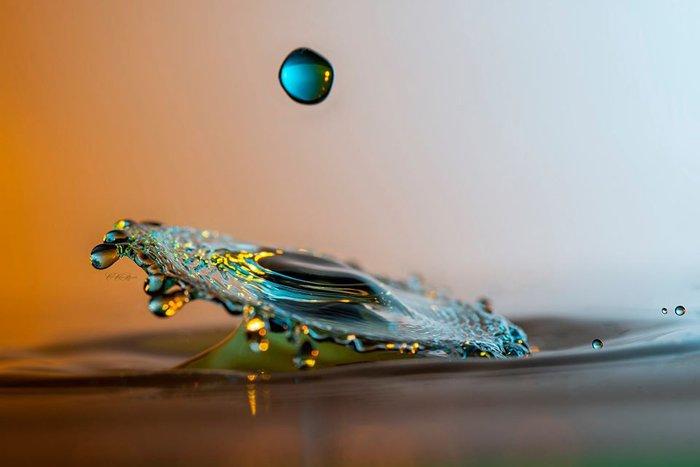 Water drop photography by Debbie Fenton