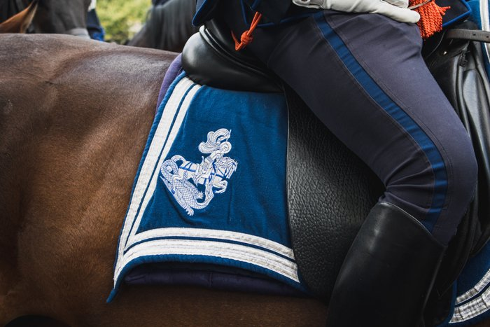 Close up of a rider on a horse