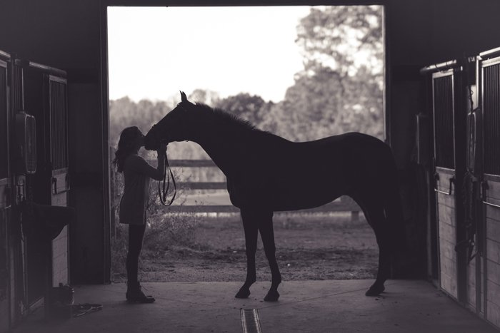 Silhouette of a woman kissing a horse