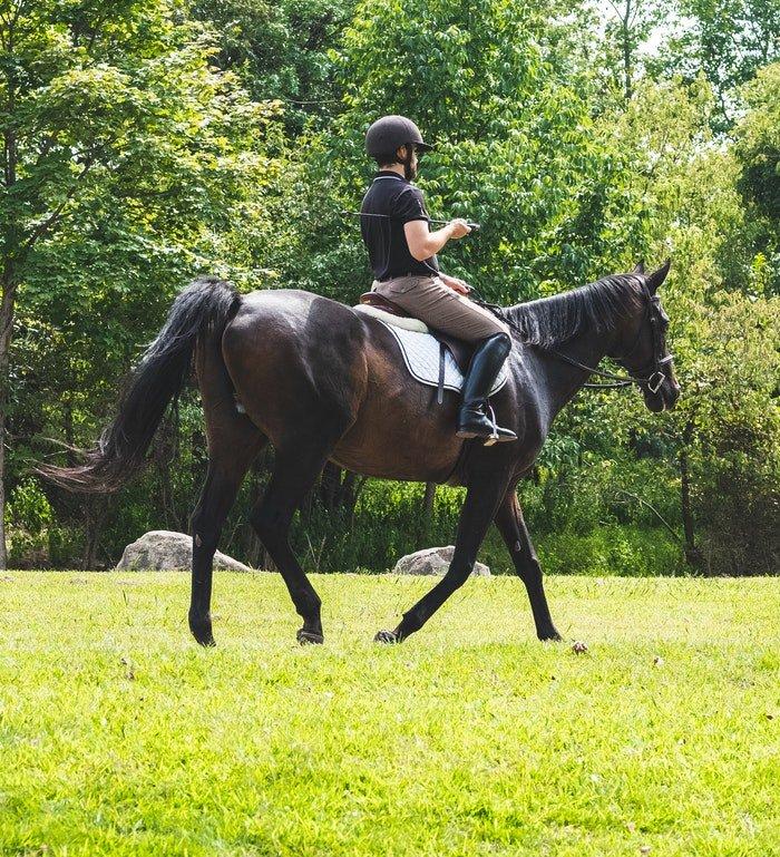 A man riding a dark brown horse