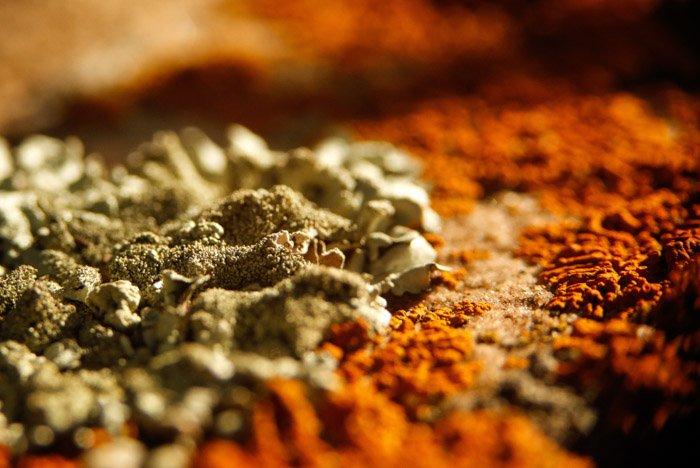 Macro of a rusty texture