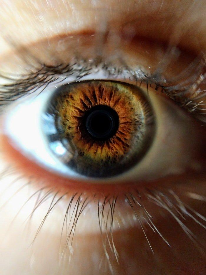 Macro photo of a brown eye