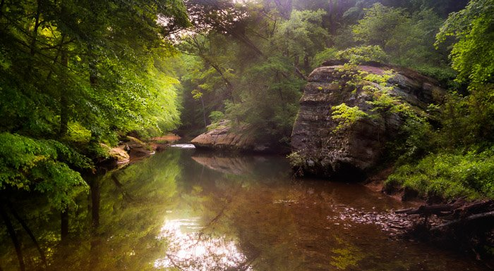 landscape photo of a small lake in a forest