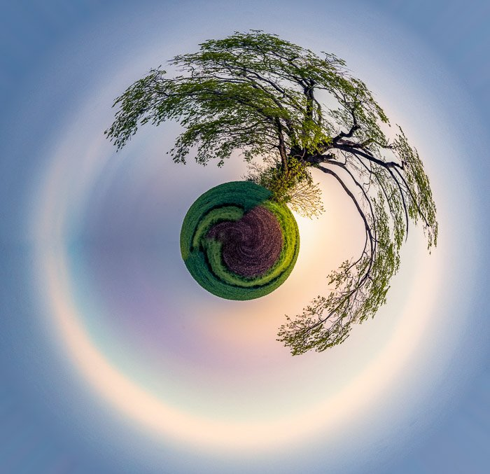 A single tree rises out of a tiny planet surrounded by a hazy sunrise.