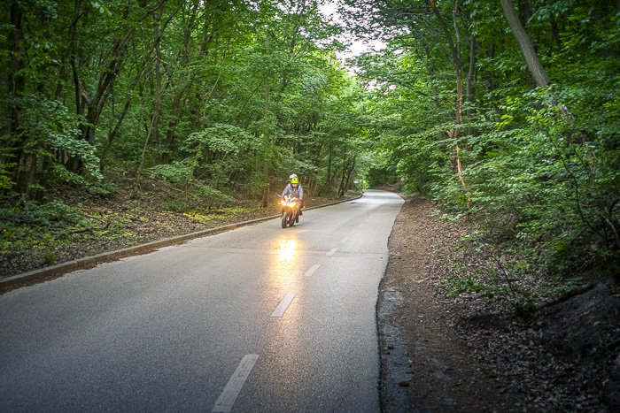 A motorbike riding down a road surrounded by trees