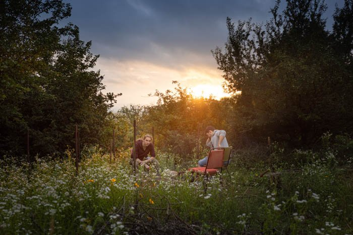 Two friends hanging out in a meadow at evening