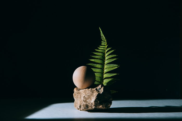 photo of a still life composition of a small rock and a leaf in low key lighting