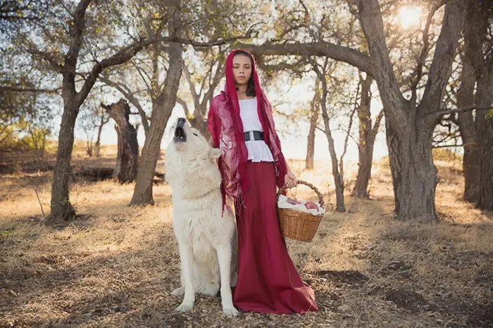 Atmospheric portrait of a little girl in a red cape beside a wolf