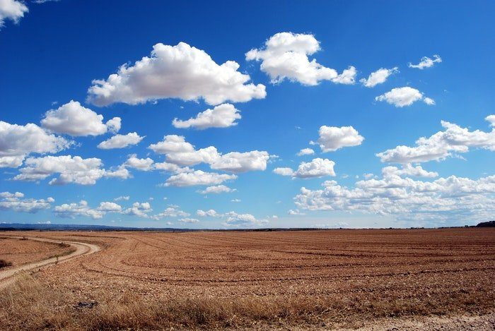 photo of a field with fluffy clouds and a bright blue sky above