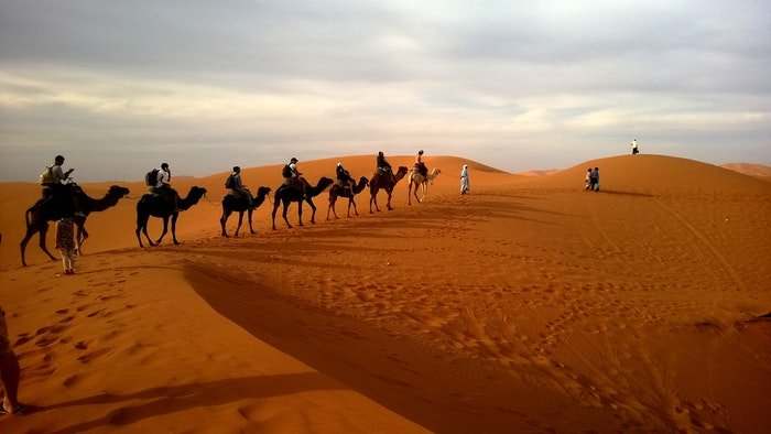 A line of camel riders moving across a desert