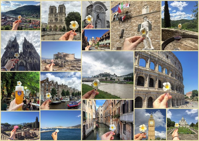 A large photo series grid of travel photos with a little flower in each shot