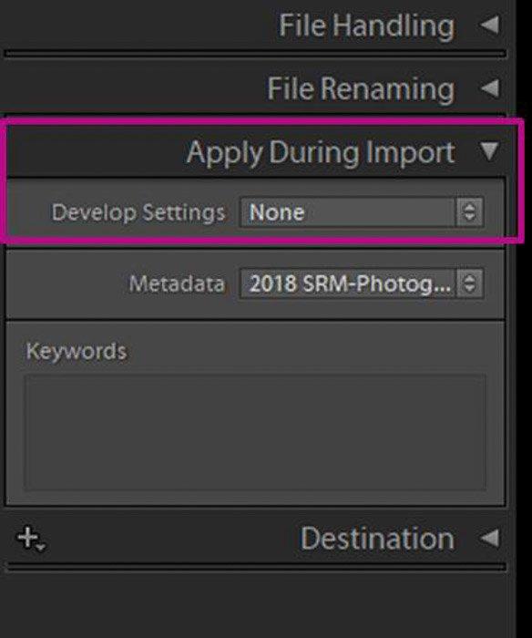 screenshot of lightroom apply during import
