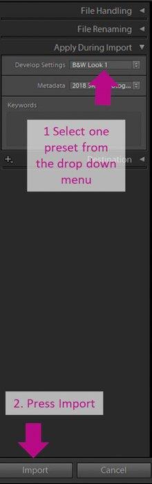 screenshot of import in Lightroom