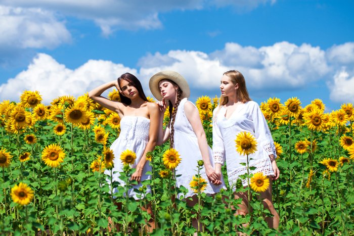 Three girls in white dress standing in a field of sunflowers. In the background the sky is blue and there are white clouds.