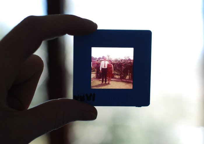 Close up of a photo negative on a slide