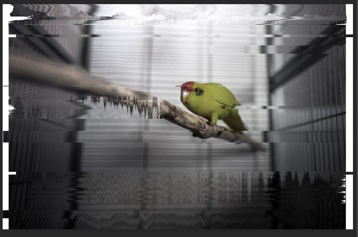 Screenshot of creating glitch effect photoshop