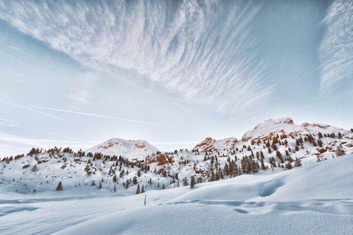 斯诺伊冬天风景照片