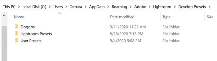 一个用户桌面lightroom开发预设文件夹的屏幕截图