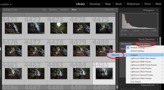 一个屏幕截图显示了如何使用Lightroom在库模块中开发预置