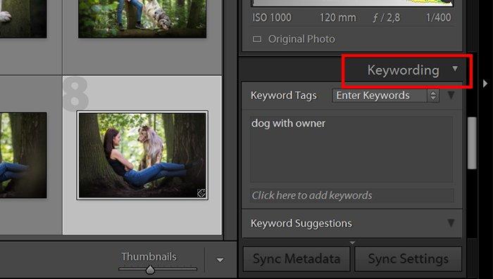 a screenshot showing the keywording option in lightroom