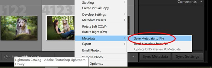 a screenshot showing how to save metadata to file in lightroom