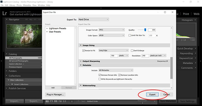 a screenshot showing how to export images in lightroom