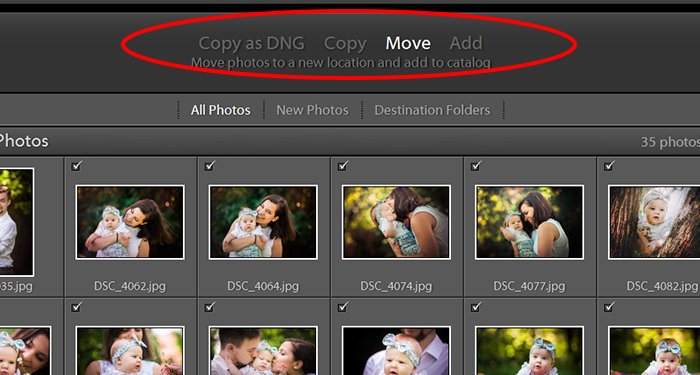 a screenshot showing how to move images in a lightroom catalog