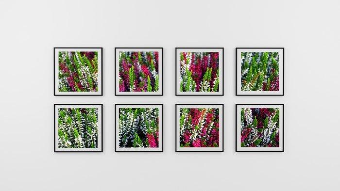 gallery of printed flowers