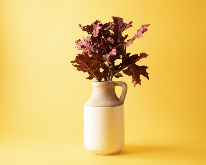 A vase of leafs against a yellow background