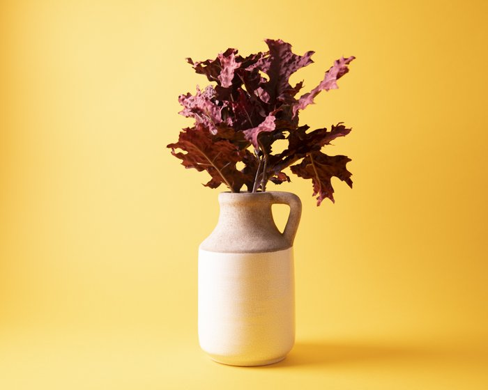 A vase of leaves against a yellow background