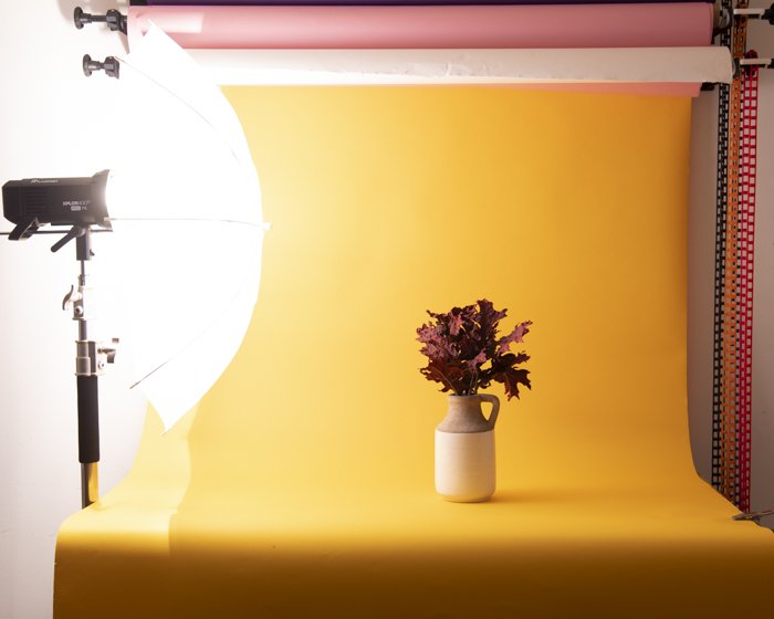 A still life photoshoot of a vase of flowers in an enclosed structure