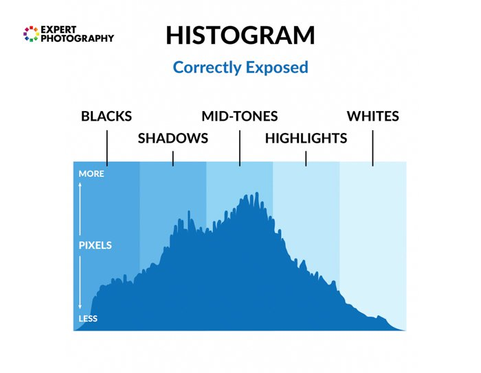 Diagram of a photography histogram with terms overlayed