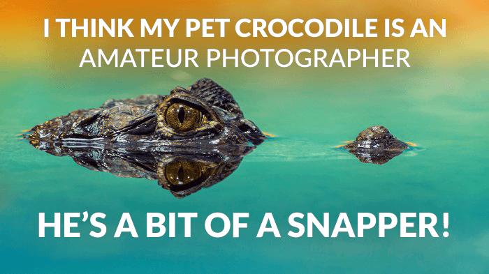 Photography joke over a photo of a crocodile in a lake