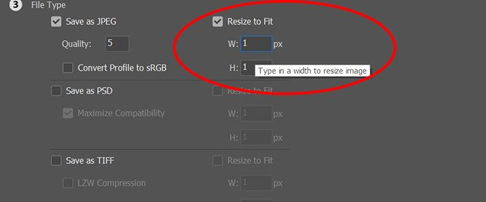 A screenshot of setting file parameters for batch resizing images in Photoshop
