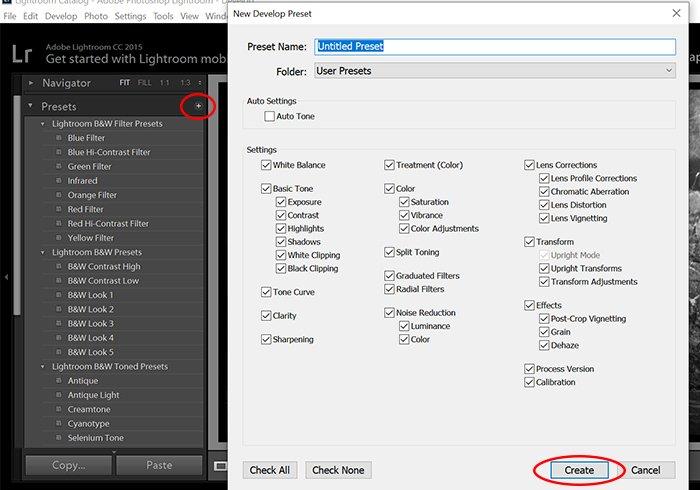 Screenshot of Lightroom black and white settings