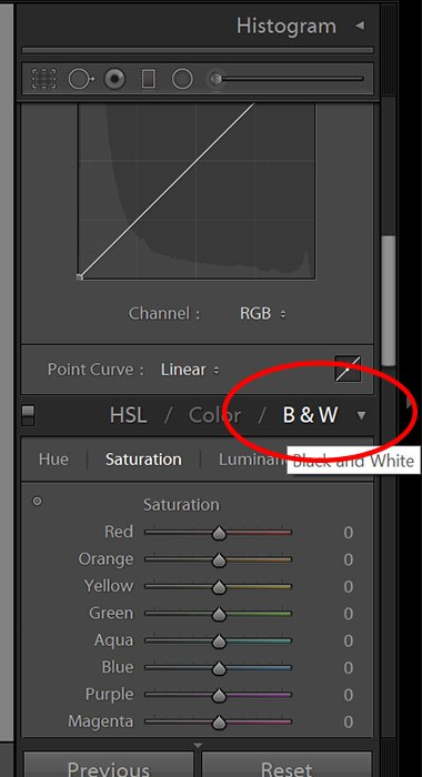 Screenshot of editing black and white photo in Lightroom