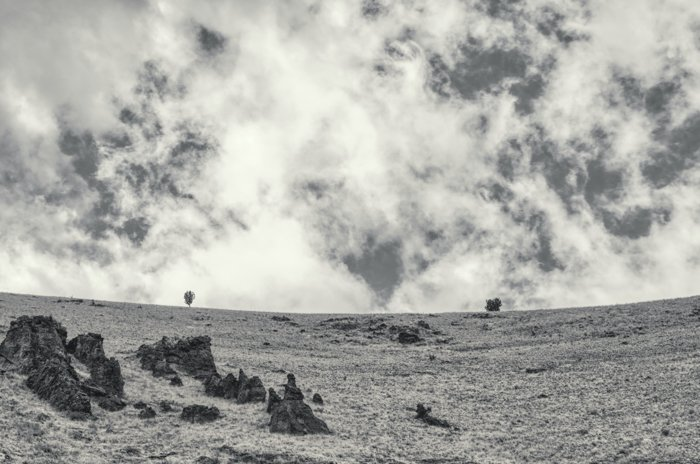 a black and white image of a landscape shot with a ultraviolet filter