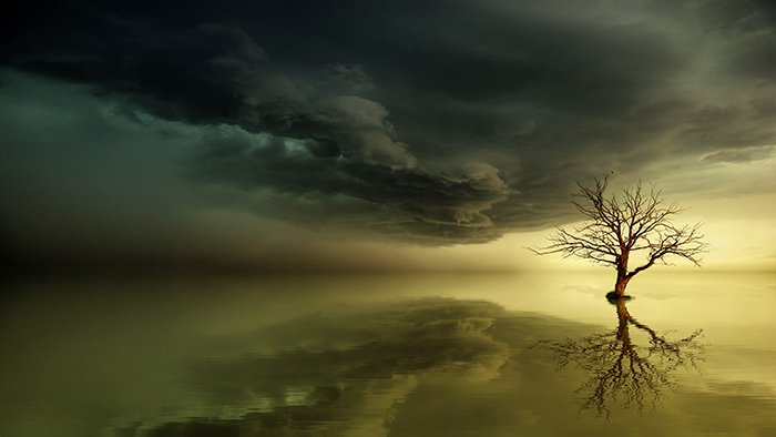Fine art photo of a tree in a stormy landscape