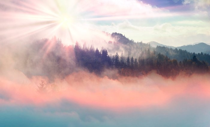 A foggy forest and mountain landscape in autumn with a sun flare