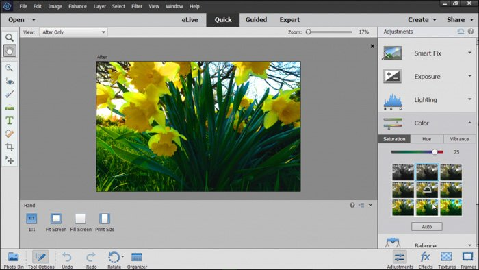 a screenshot of adobe elements photo editing software on quick mode