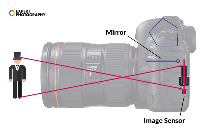an infographic explaining how a dslr sees an image