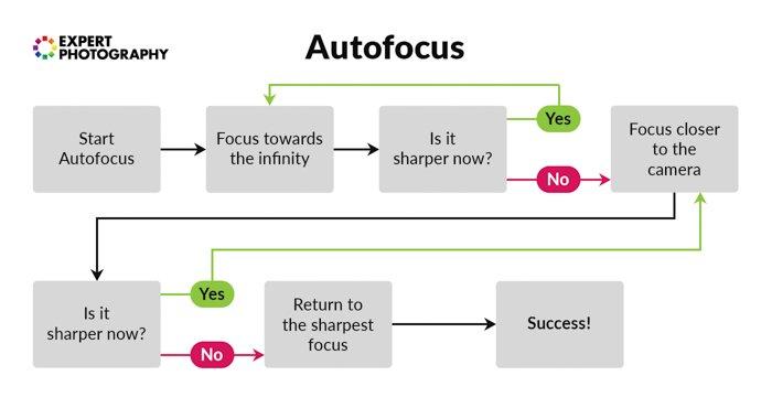 an infographic explaining autofocus