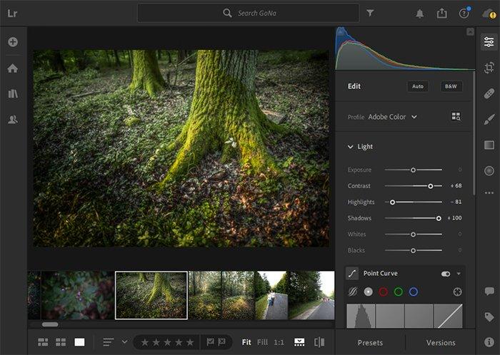 a screenshot of adobe lightroom cc photo editing software interface