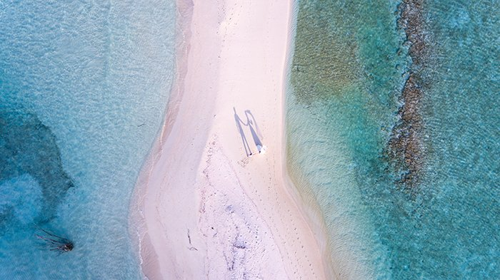 Aerial photo of a bride and groom on a beach