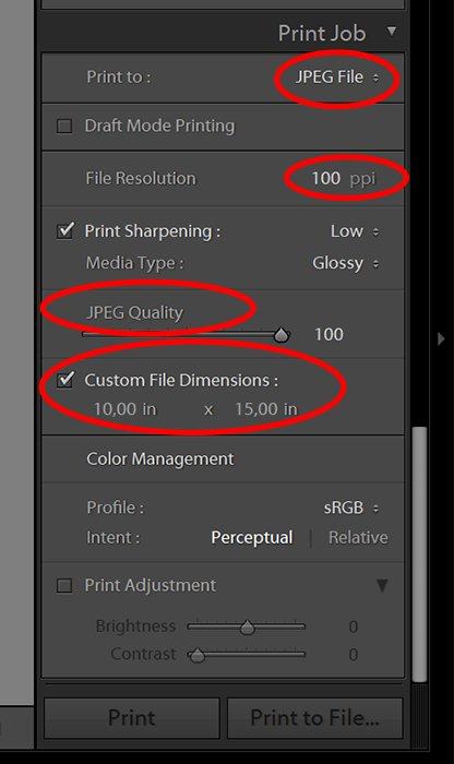screenshot of Lightroom UI for Print Job settings