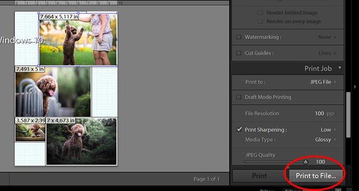 Lightroom UI screenshot of Print to File...