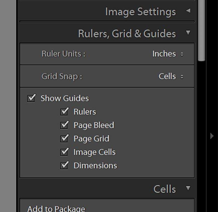 screenshot of Lightroom UI of Rules, Grid & Guides