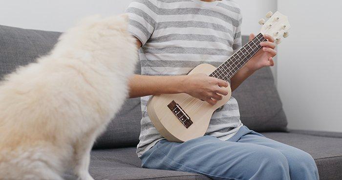 Pet owner play ukulele with her dog.