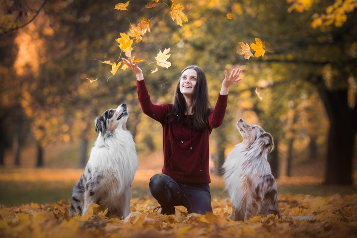 Cute pet photography of a womans playing with two dogs outdoors
