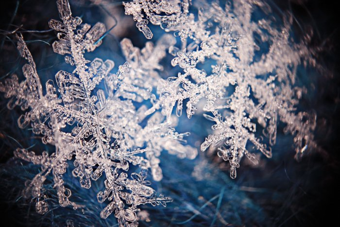 A closeup image of a snowflake crystal.